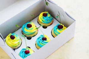 Vanilla cupcakes with a cap of cream on light wooden tablein the box