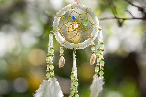 Mint dreamcatcher hanging on tree