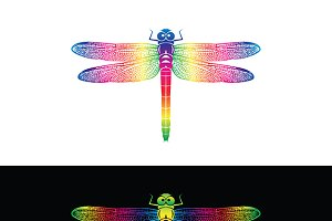 Vector of colorful dragonfly design.