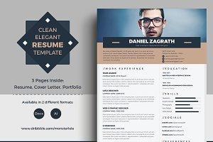 Clean Elegant Resume (3 Pages)