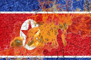 North Korea Flag Burning