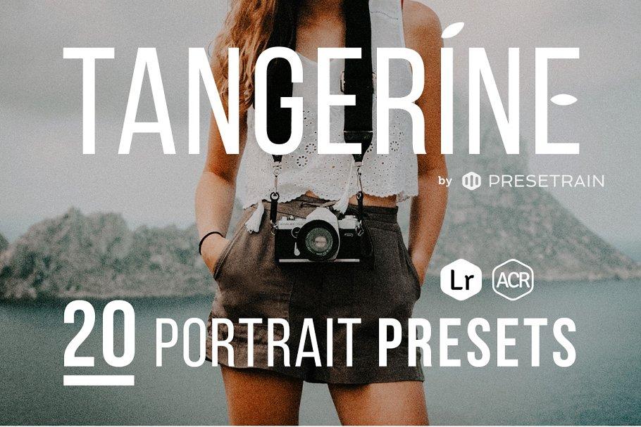 Tangerine Presets - Lightroom & ACR ~ Photoshop Add-Ons ~ Creative