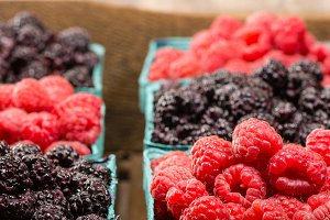 Red and black raspberries