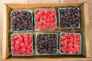 Box with red and black raspberries