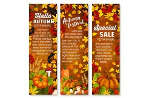 Autumn vegetable, leaf banner on wood background