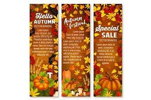 Autumn vegetable, leaf banner on wood background