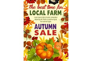 Autumn sale poster of farm harvest vegetable, leaf