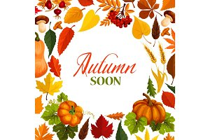 Autumn poster with frame of fall season nature