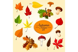 Autumn season icon set with leaf and mushroom