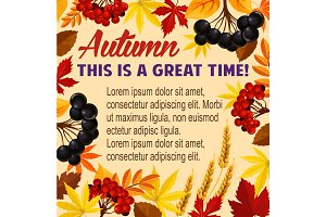 Autumn vector poster acorn leaf, rowan berry