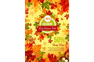 Autumn sale discount offer banner with fall leaf
