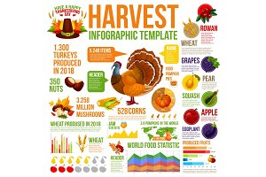 Autumn harvest infographic for Thanksgiving design