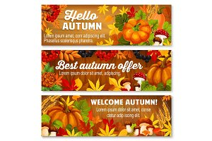Autumn leaf on wooden background banner set
