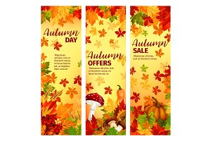 Autumn sale banner set of fall leaf and pumpkin