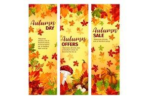 Autumn sale banner set of fall leaf and pumpkin