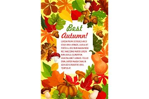 Autumn leaf and pumpkin banner for fall season