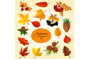Autumn leaf, fruit and berry, fall season icon set