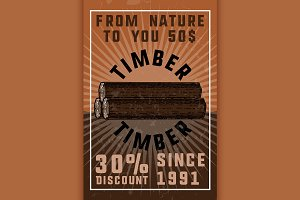 Color vintage timber banner