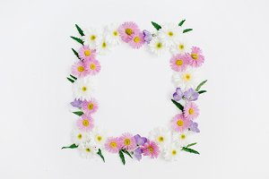 Floral frame with daisy flowers