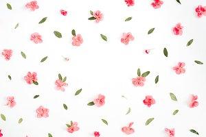 Frame of hydrangea flowers