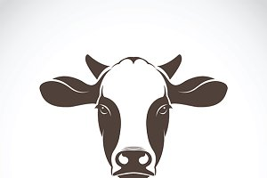 Vector of cow face design. Farm.