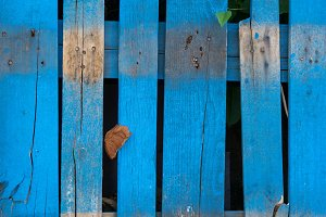 Old Blue Wood Fence