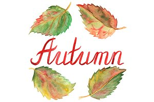 Autumn leaves month word lettering