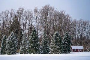 PERRY OHIO SNOW DAY