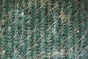 Faux Hedge Slats in Chain Link fence