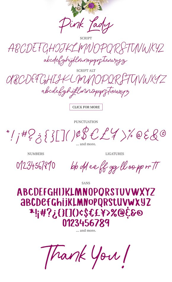 Pink Lady Font Duo in Script Fonts - product preview 12