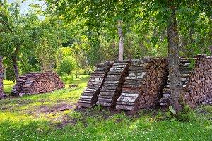 Row of firewood in the summer garden