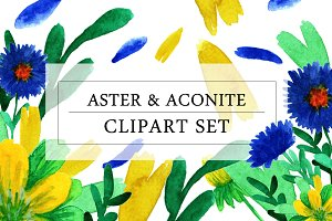 Aster And Aconite Clipart Set