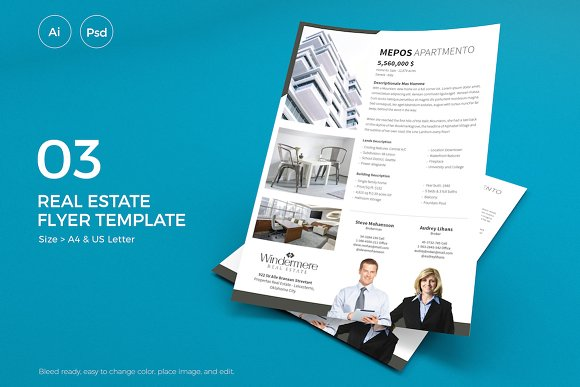 Real Estate Flyer 03