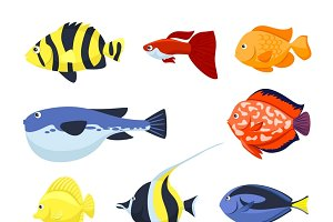 Set of fish vector for aquarium