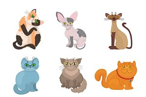 Cartoon domestic cats vector