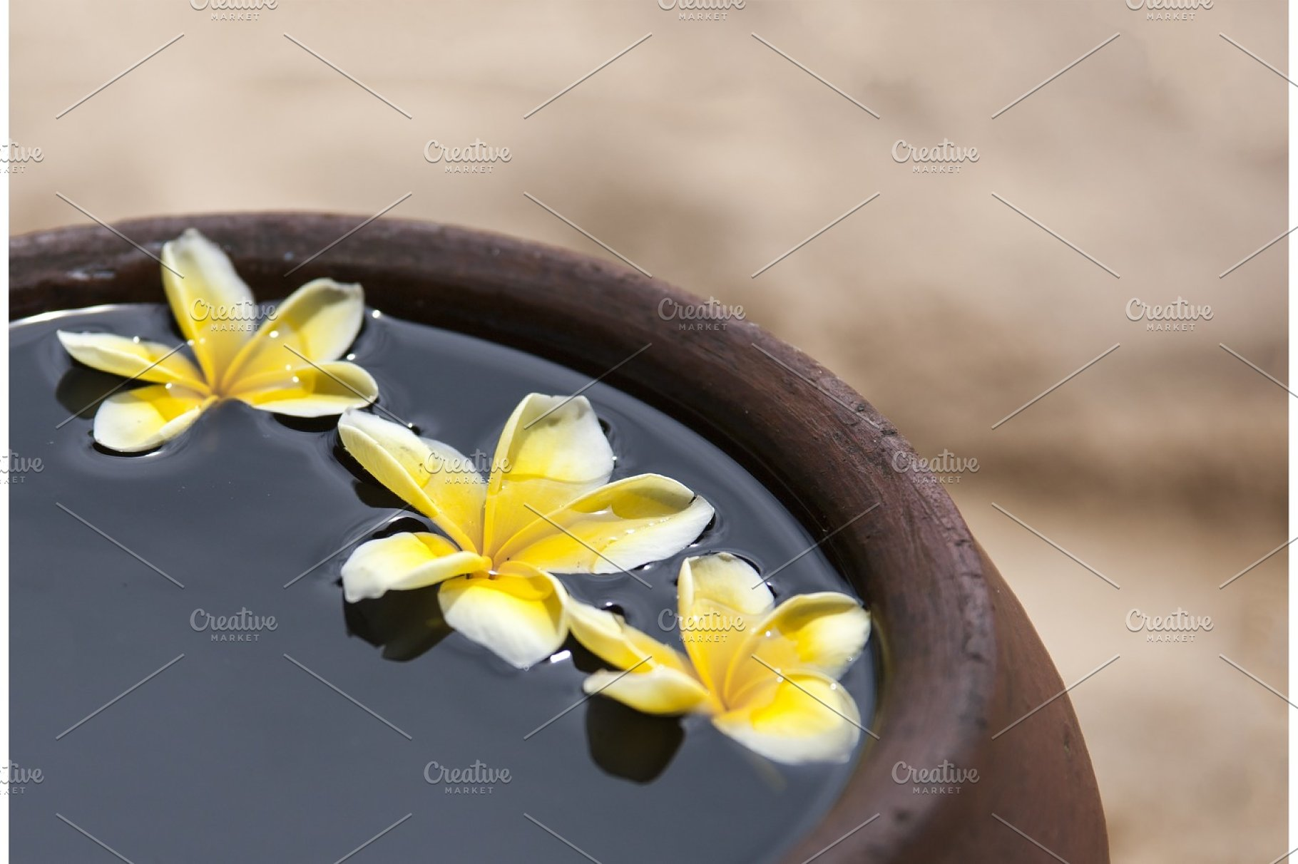 Clay jug with flower plumeria or frangipani decorated on water  Bowl in zen  style for spa meditation mood