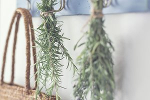 Hanging herbs - Rosemary & Lavender