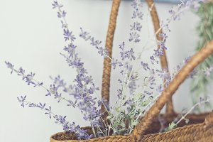Russian Sage in vintage Market Tote