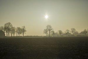 Foggy landscape in winter