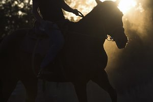 Silhouette of a woman riding a horse - sunset or sunrise