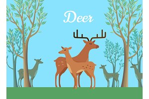 Funny Pair of Deer Illustration