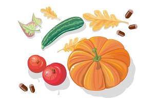 Autumn Harvest Vector Concept in Flat Design