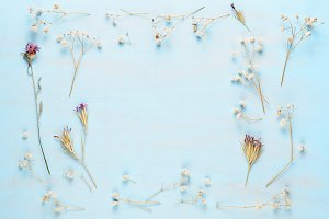 Dry flowers on blue wood