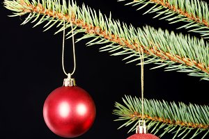 Two christmas balls hanging on a tree.