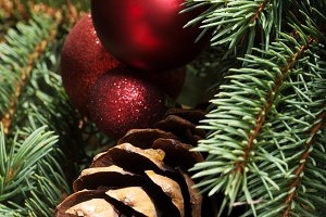 Christmas decorations- pine, balls on a tree.