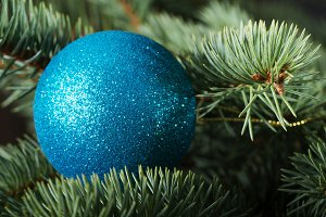 One christmas ball on a tree.
