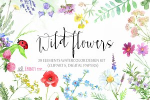 Meadow flowers. Floral clipart paper