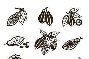Cacao beans vector icons