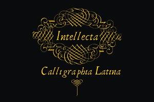 CalligraphiaLatina, ornaments