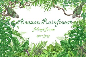 Amazon Rainforest Frame